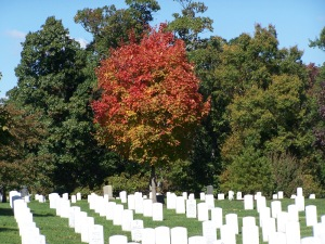 Arlington Cemetery - taken Sept 2006